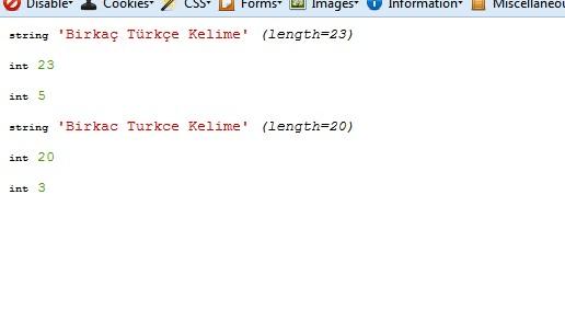 Türkçe karakter sayım problemleri
